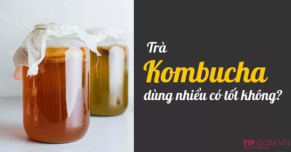Kombucha là gì? Sử dụng kombucha nhiều có tốt cho sức khỏe không?