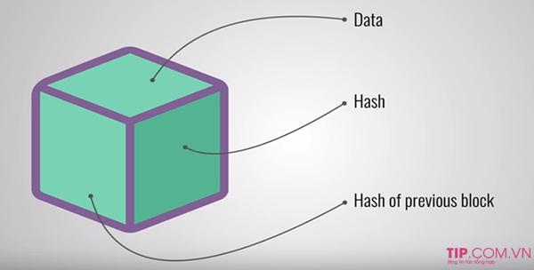 Cấu trúc của Blockchain được chia thành 3 phần