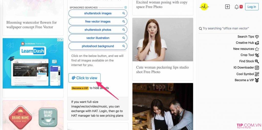 Get link Shutterstock: Cách Tải ảnh trên Shutterstock Miễn Phí 100%